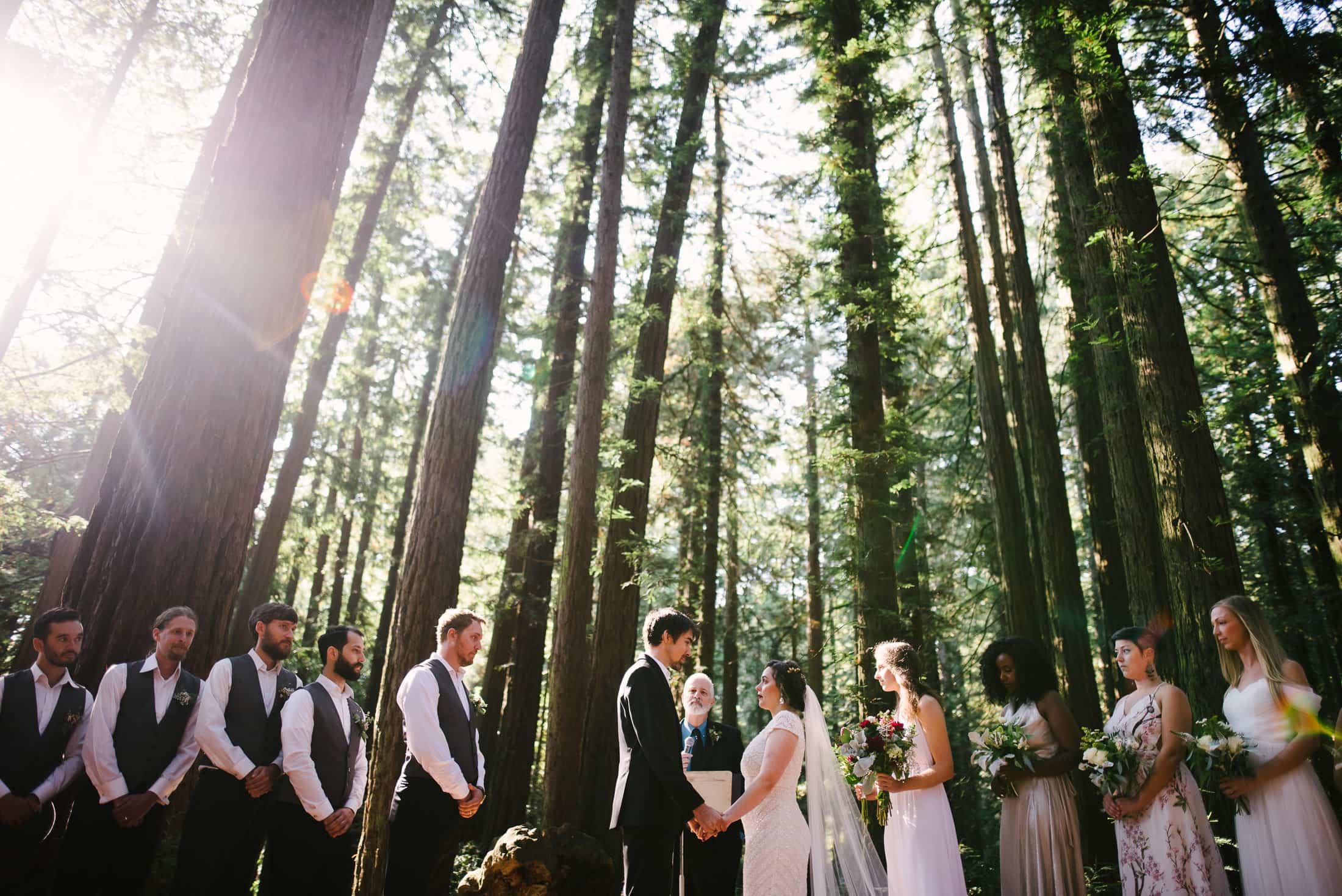 Robert's Regional Park wedding Bay Vista Site
