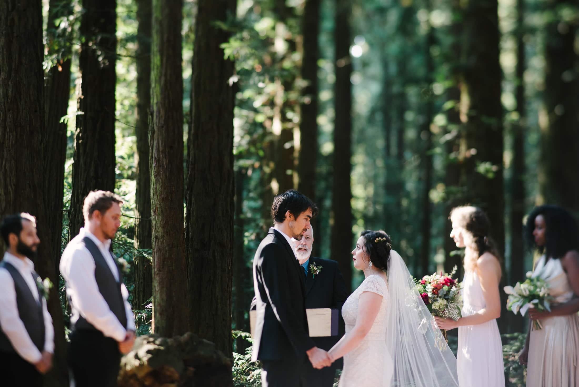 Robert's Regional Park wedding ceremony