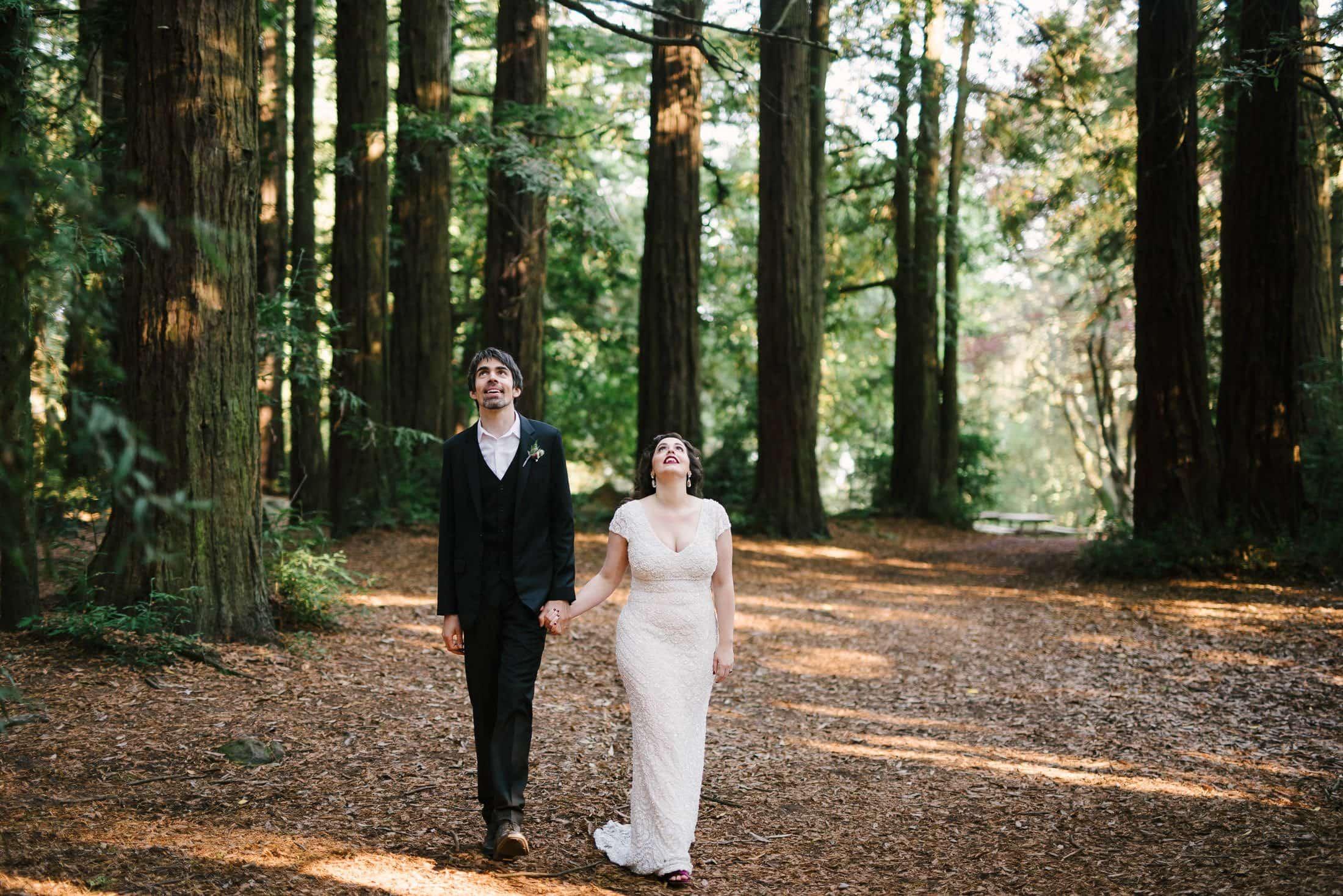 Wedding Couple looking at Redwoods in Robert's Regional Park