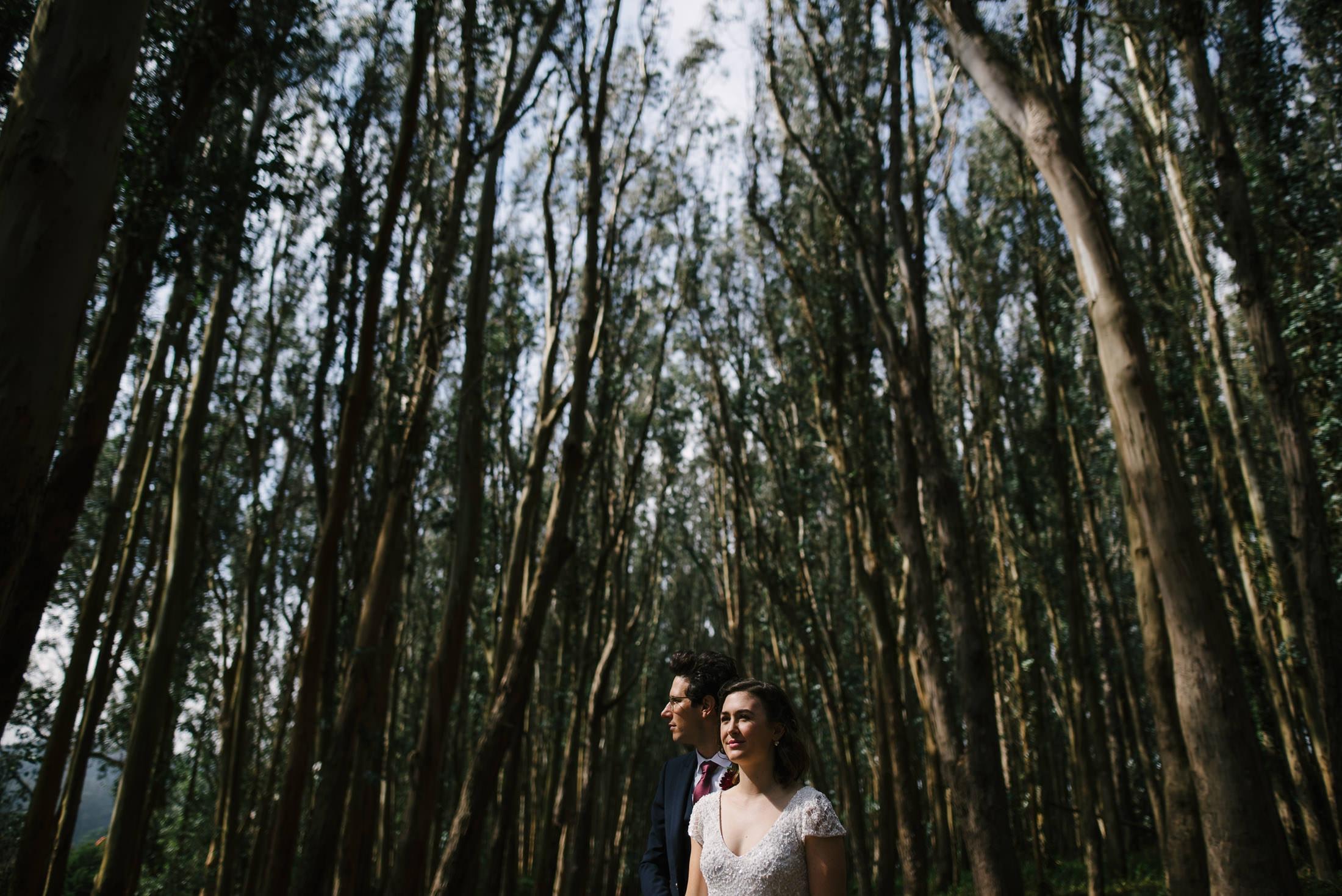 Presidio Wood line Wedding Portrait