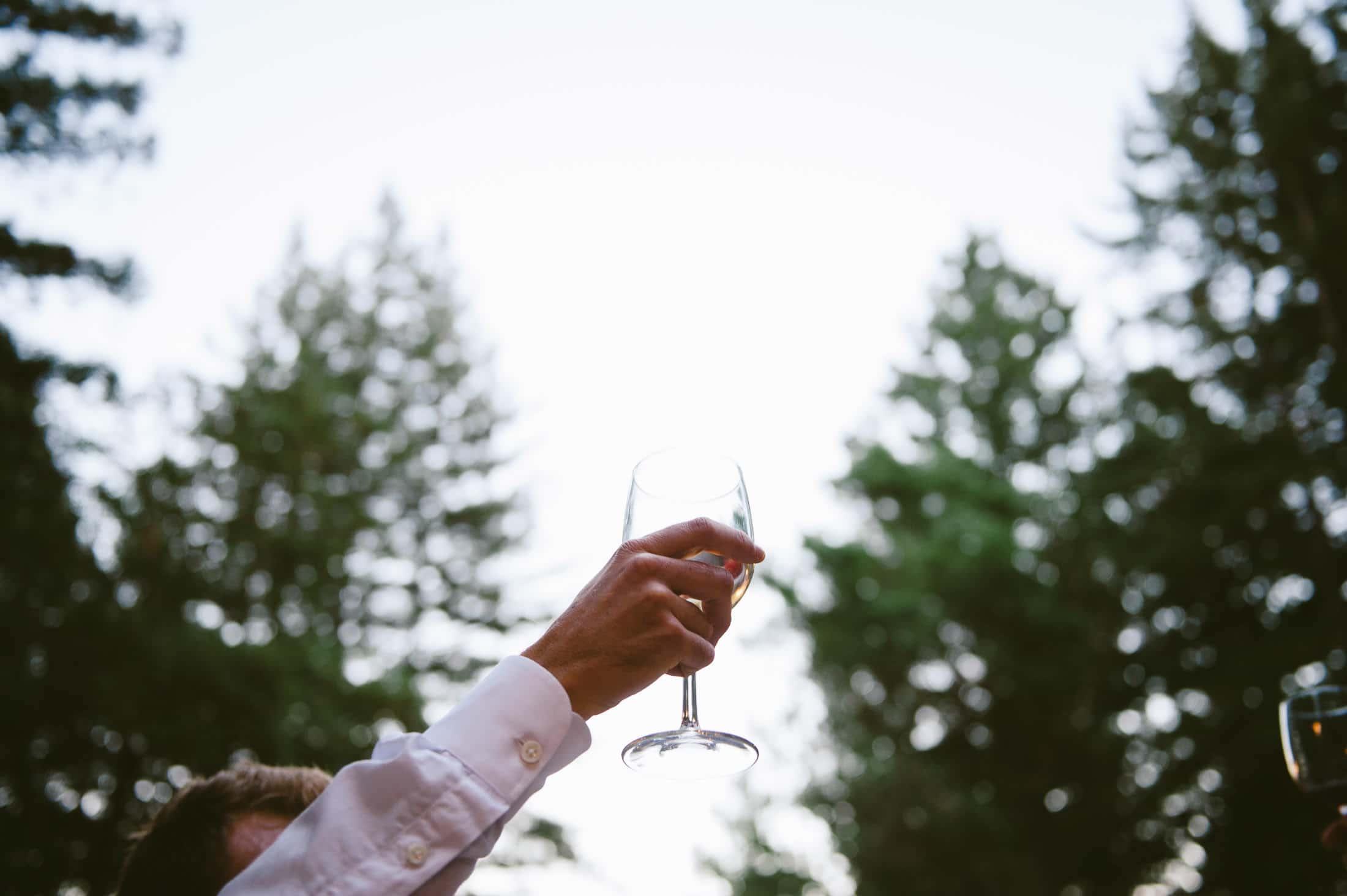 Sequoia Retreat Wedding Toasting