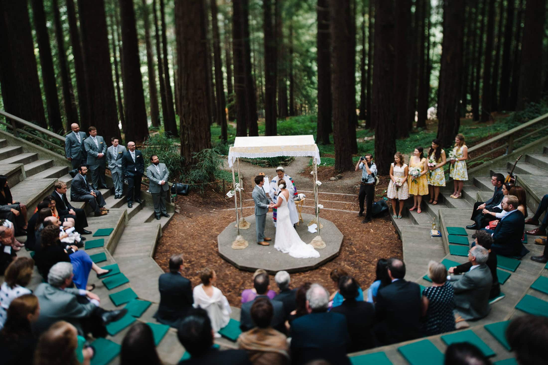 Artistic UC Botanical Garden Wedding in Redwood Grove