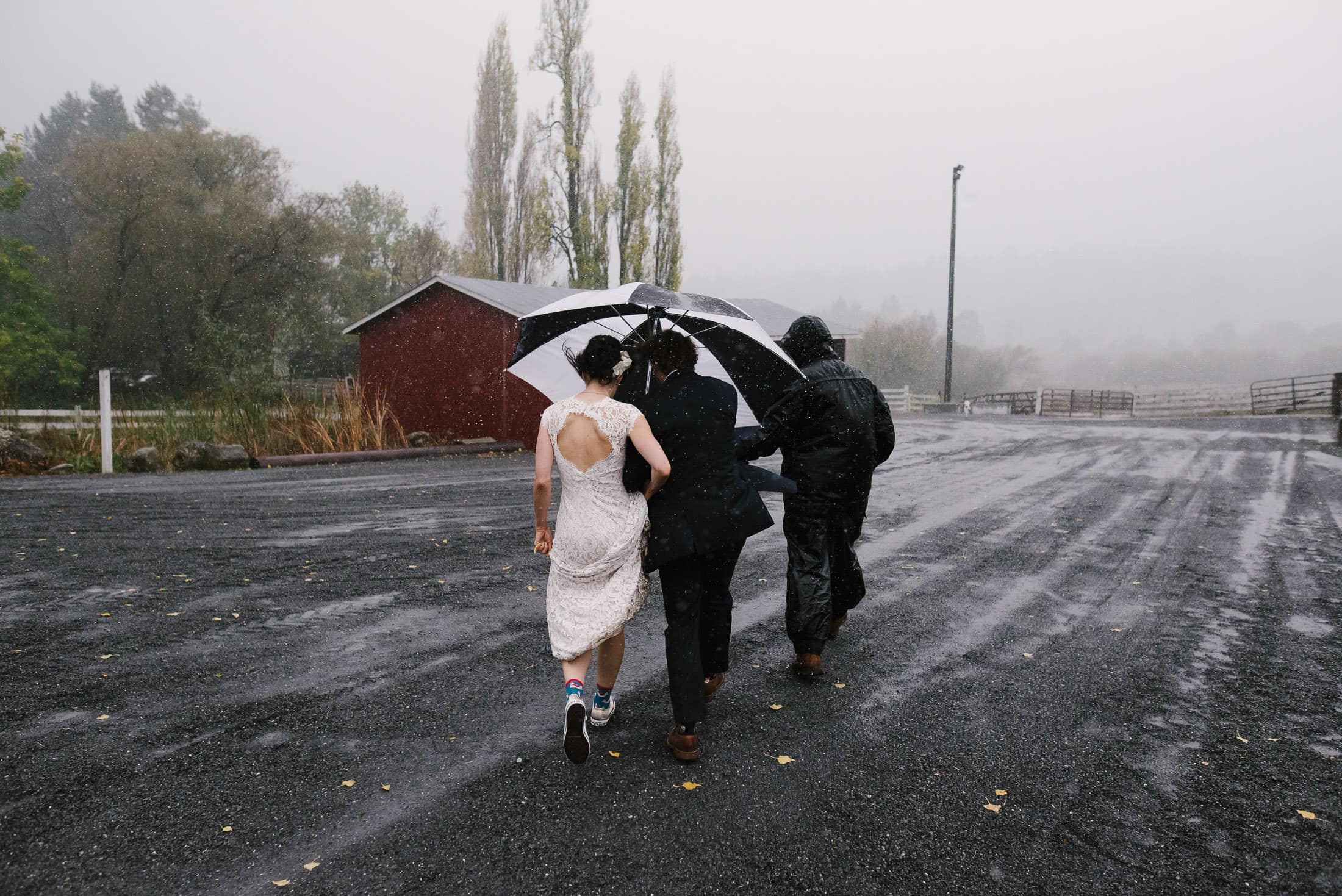rainy day wedding petaluma