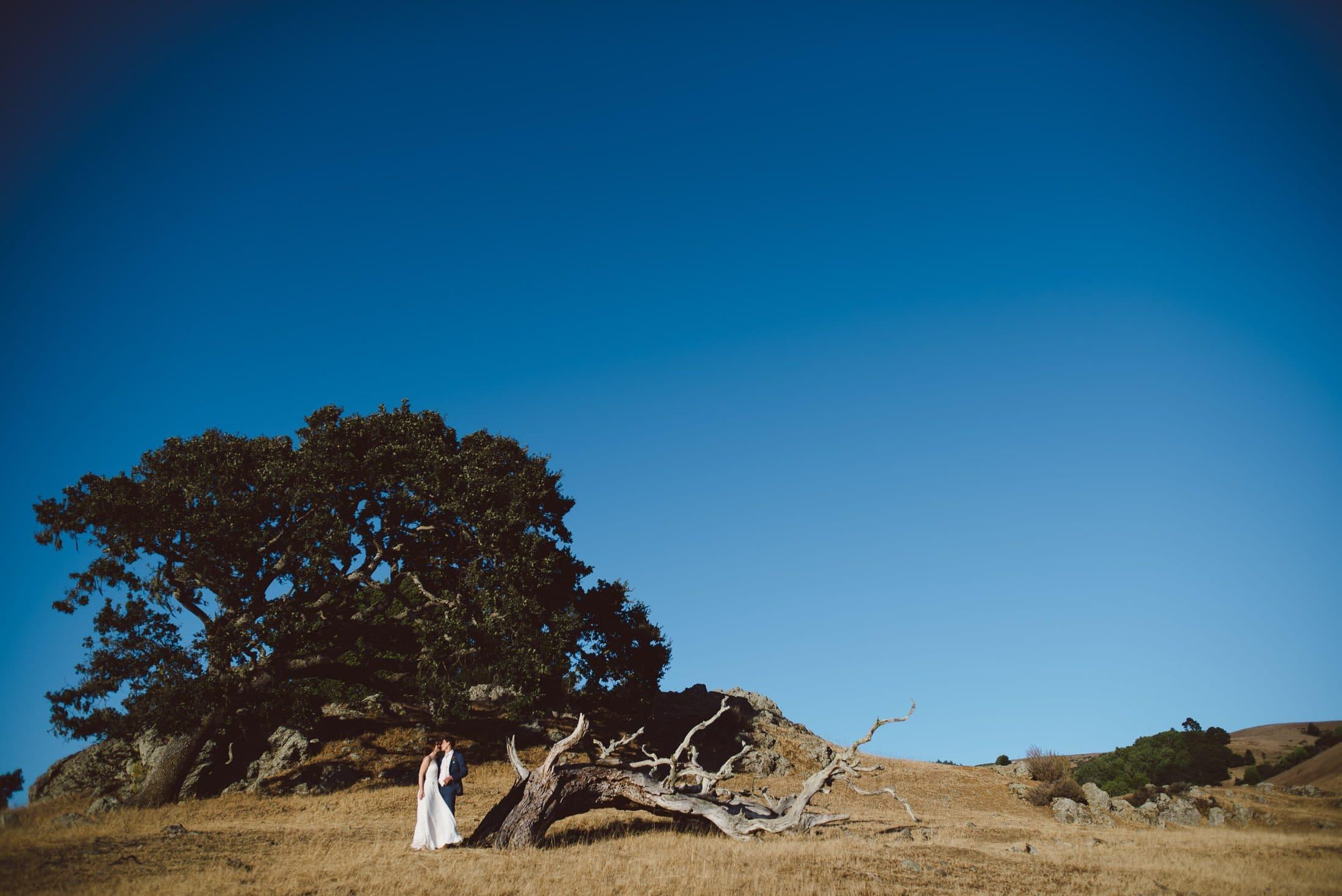 wedding portrait at rancho nicasio in marin