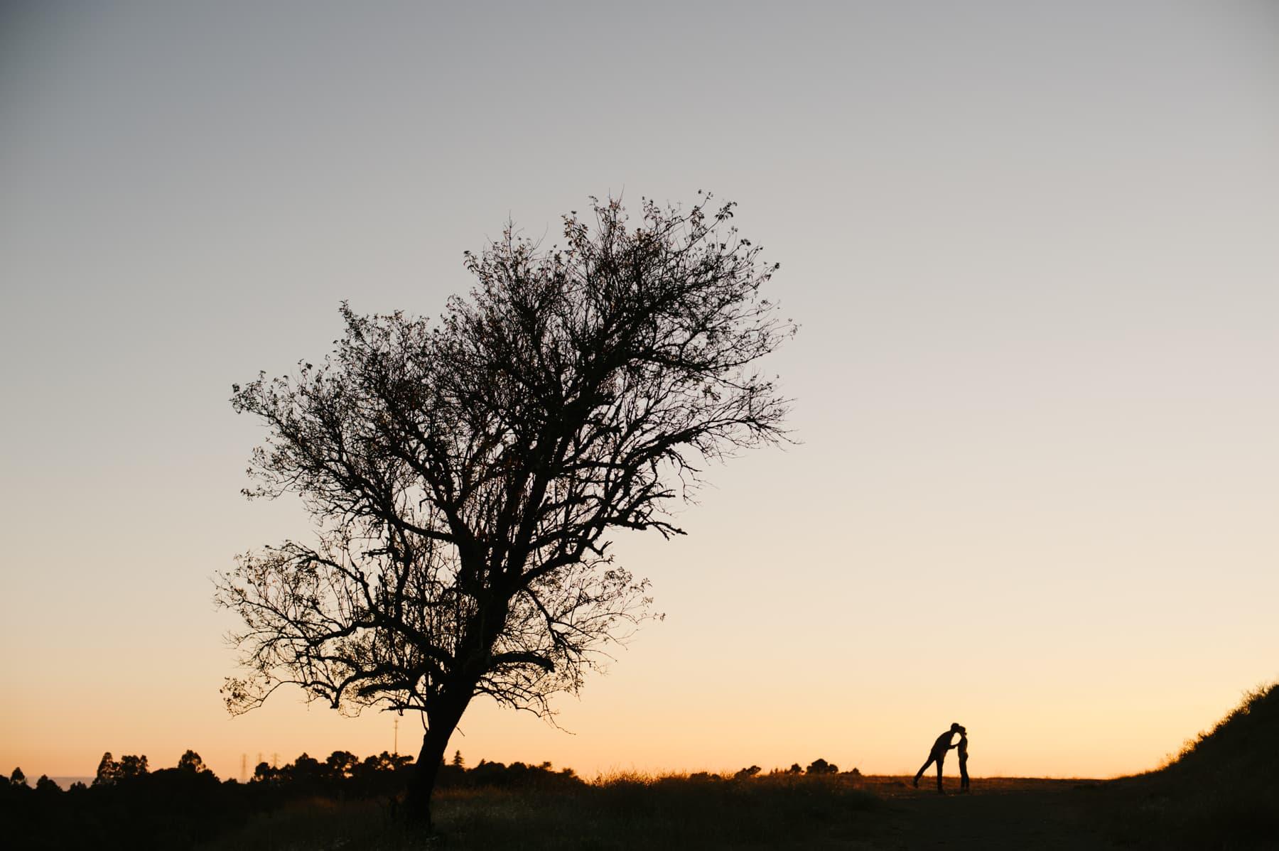 Sunset at Sibley Park Engagement