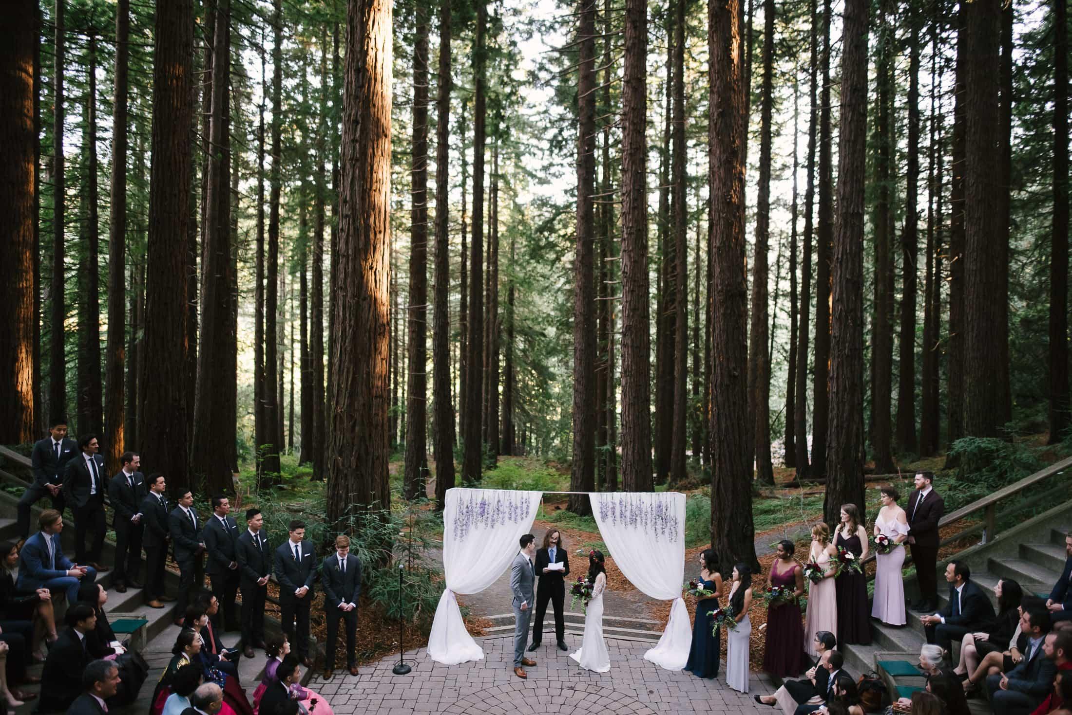 UC Botanical Gardens Wedding Redwood Grove