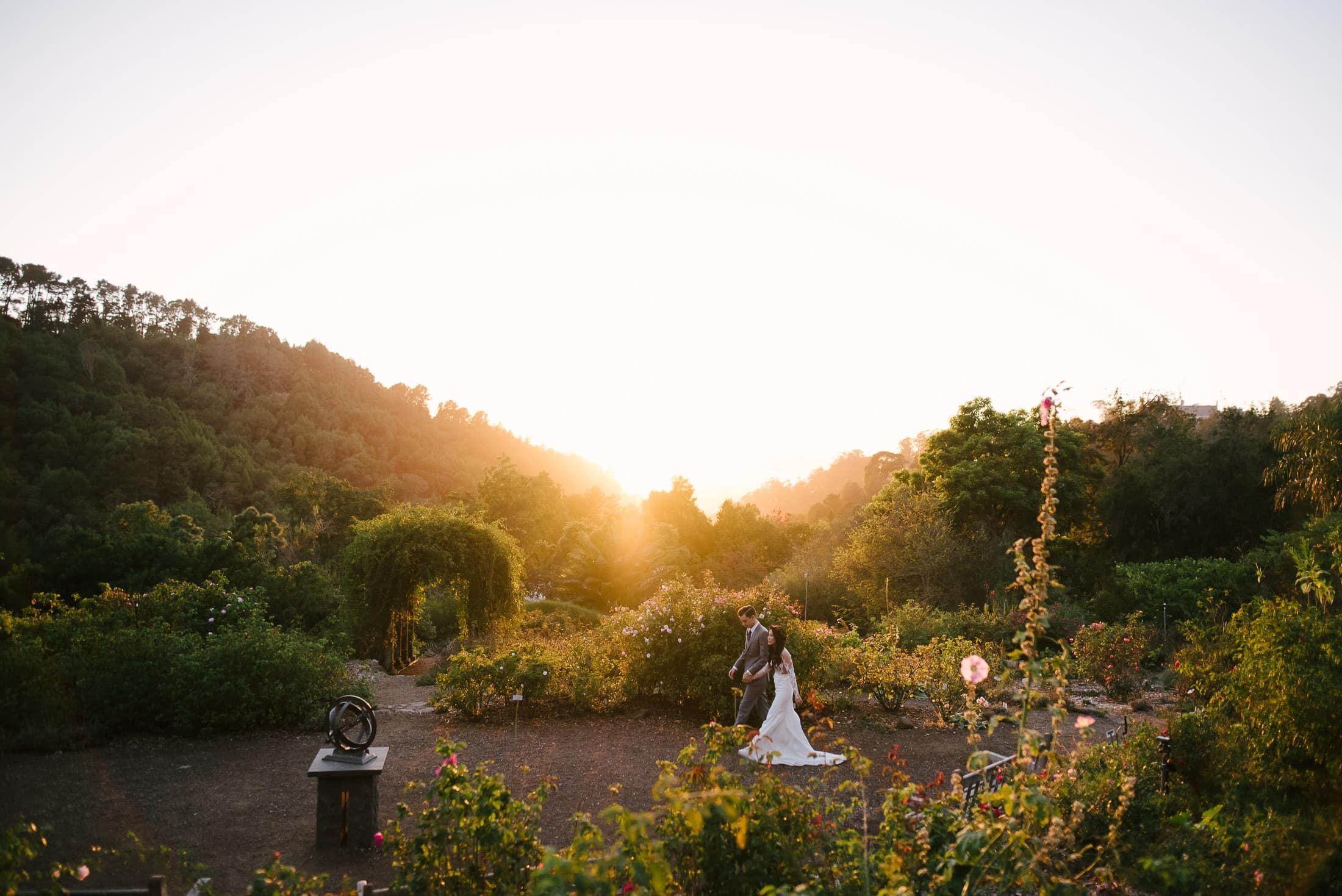 Berkeley Botanical Garden Wedding Rose