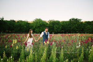 Couple walking through flowers at Full Belly Farm