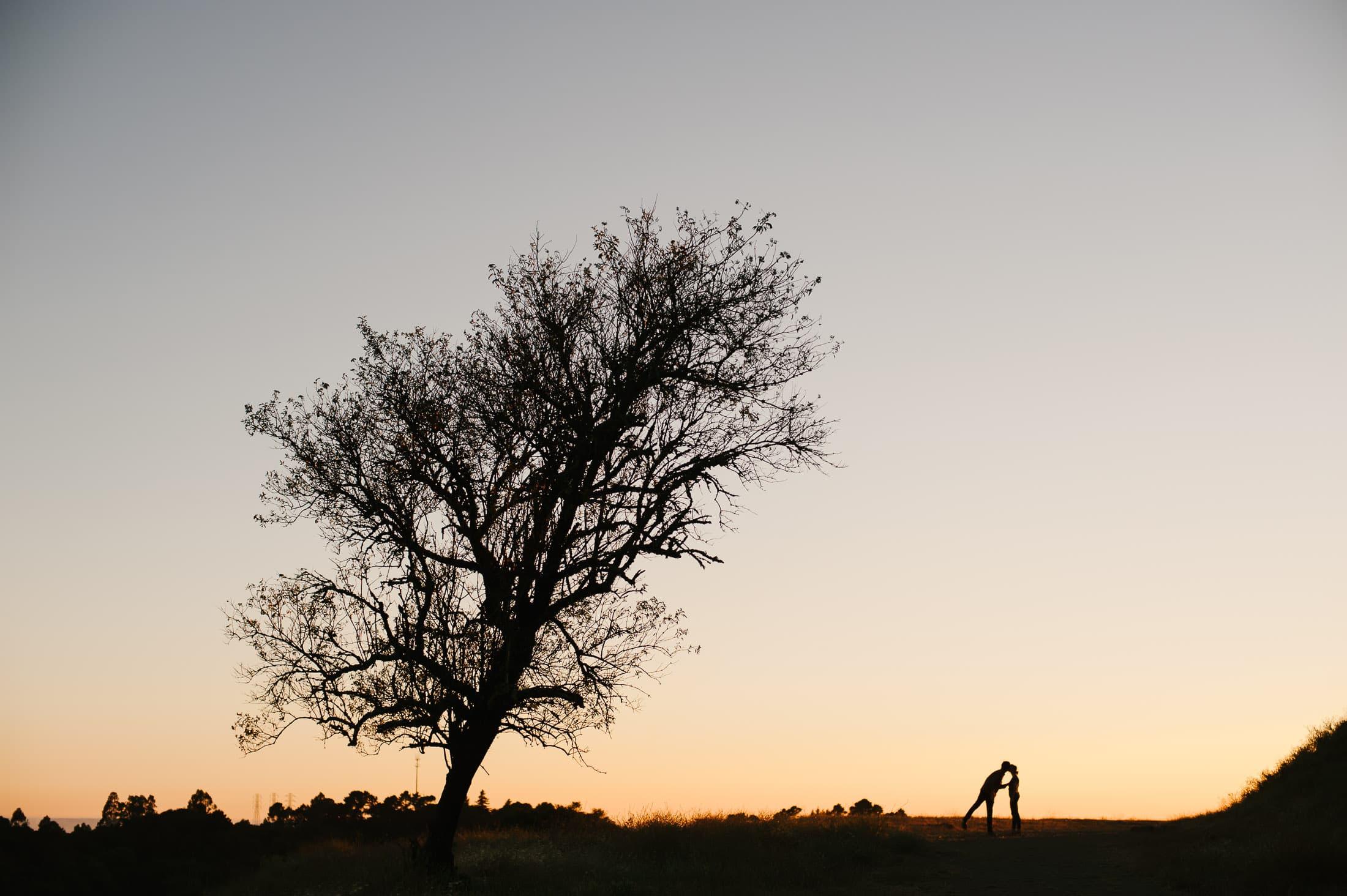 Sibley Park Engagement