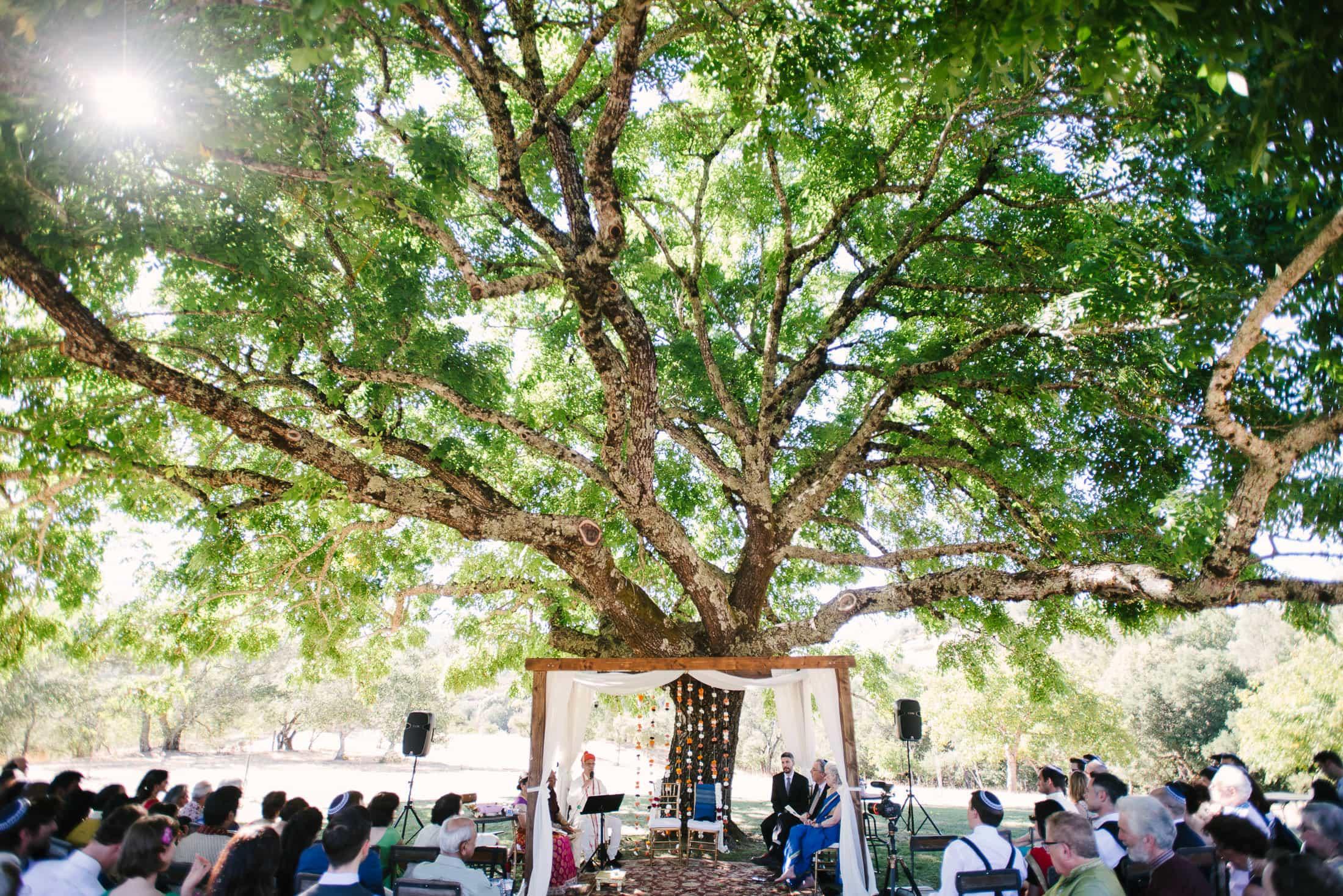 Indian Jewish Triple S Ranch Wedding