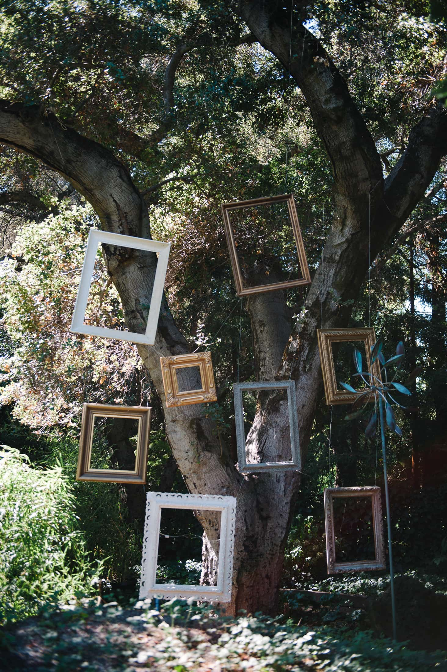 Picture Frames at Alice in Wonderland Victorian Mad Hatter Garden wedding in Atherton, CA